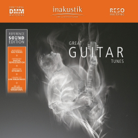 Inakustik Great Guitar Tunes 180 grams dubbel-LP